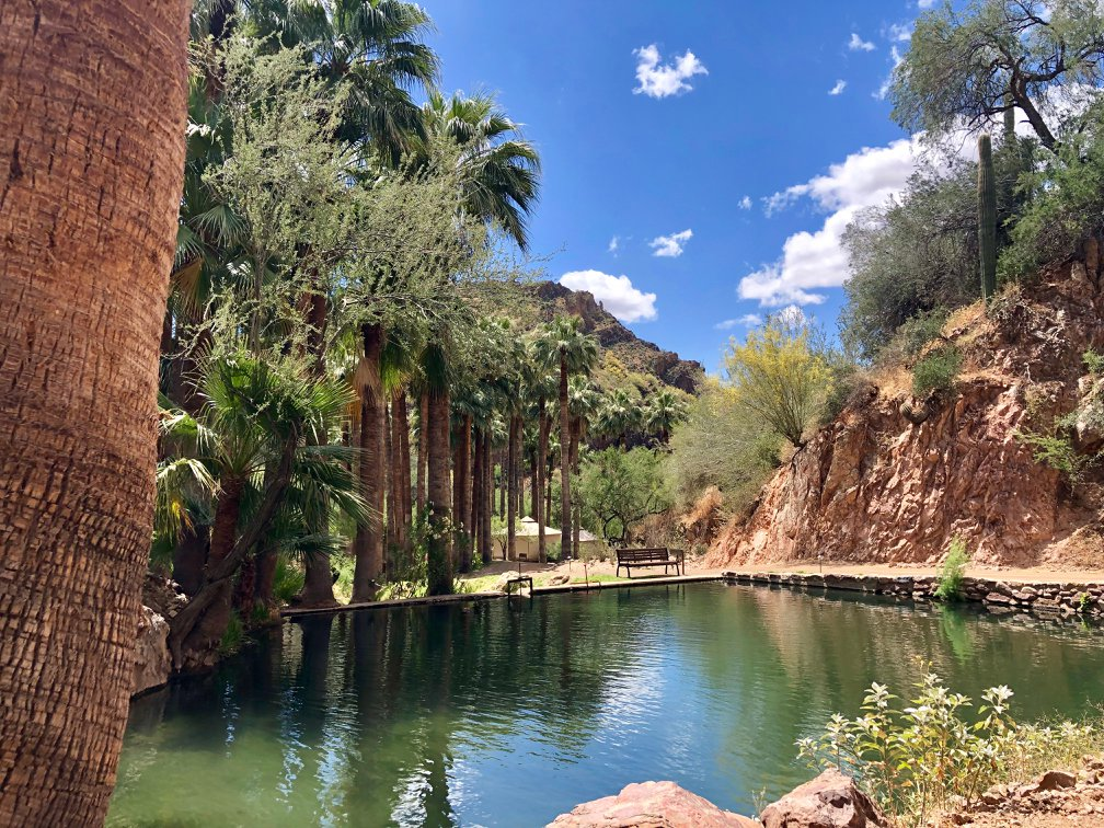 Plan a Desert Safecation with Arizonas Castle Hot Springs